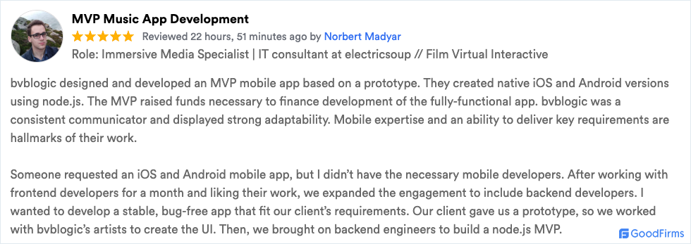bvblogic mobile review