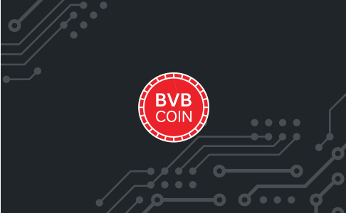 [bvblogic] bot main logo